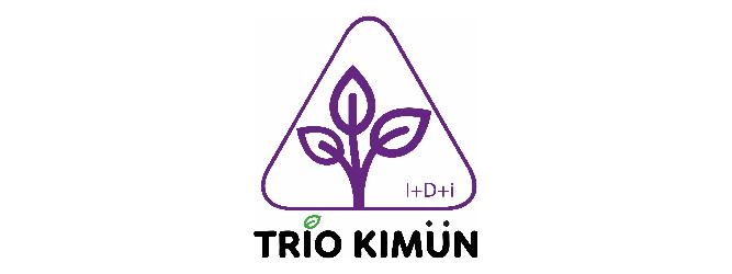 TRIO KIMÜN